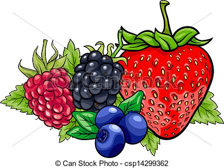 Fruit and . Berry clipart