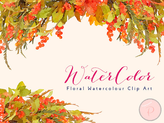 Berry clipart autumn berry. Watercolor flower floral clip