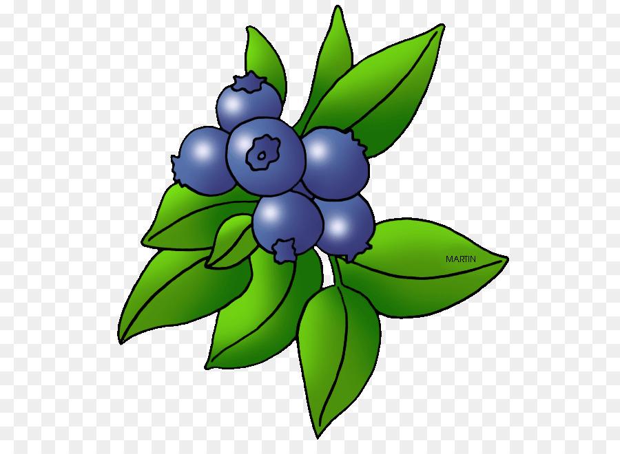 Blueberry Blackberry Fruit Clip art