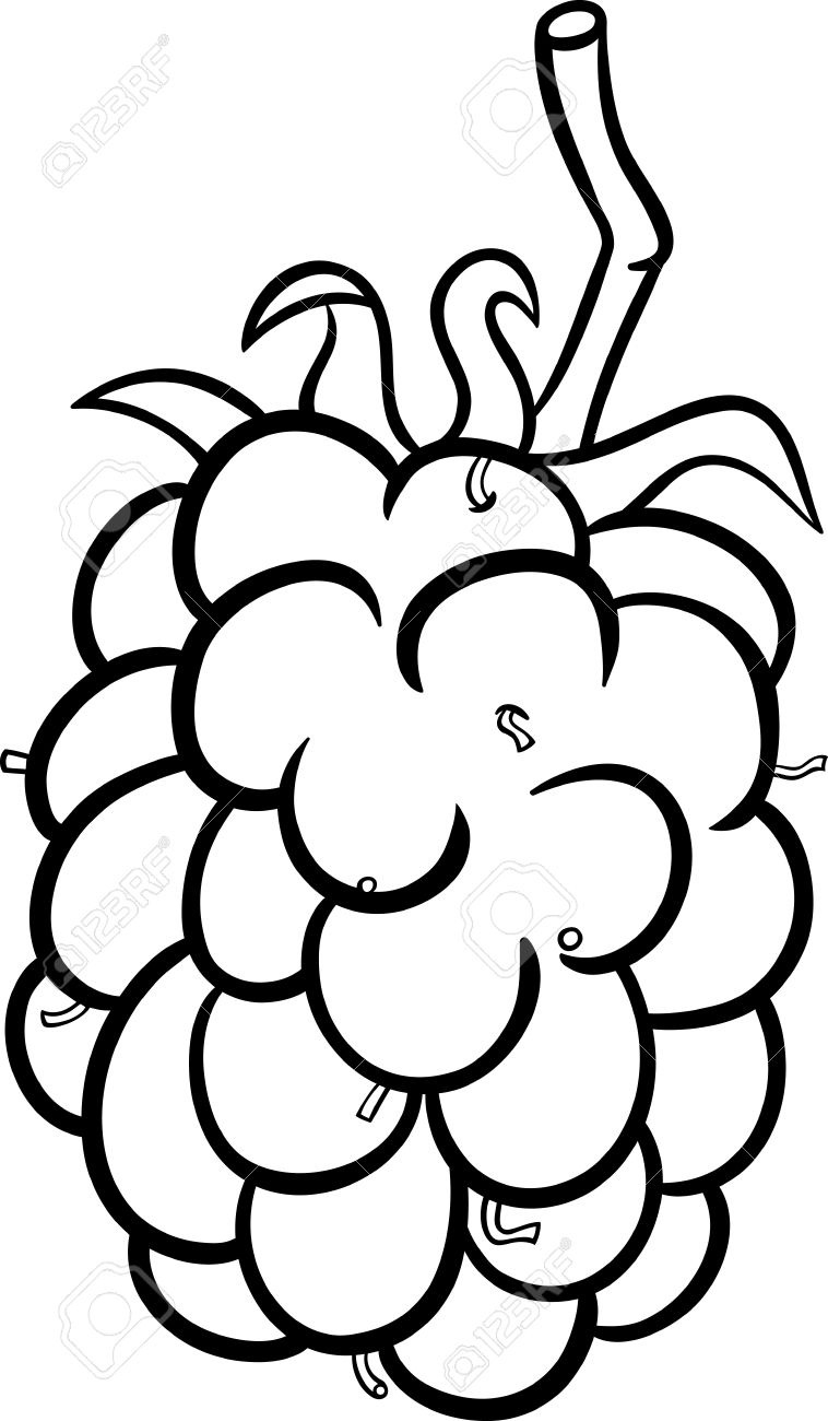 Blackberry letters cartoon illustration. Berry clipart black and white