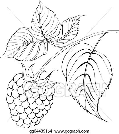 Berry clipart black and white. Vector art raspberry branch