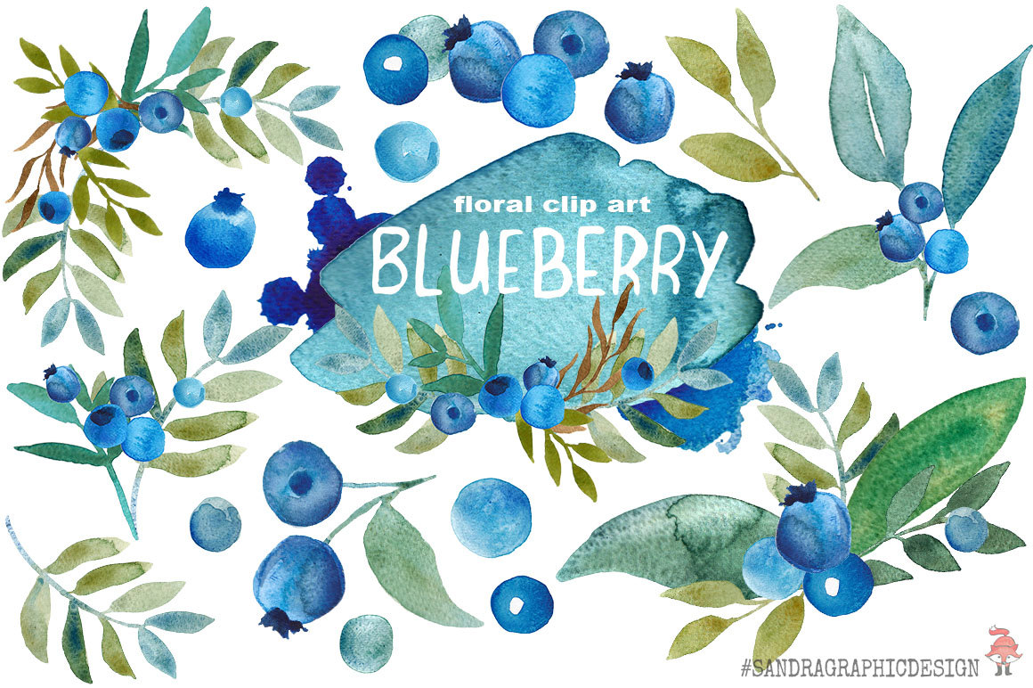 Blueberry clipart clip art. Hand painted watercolor fruit