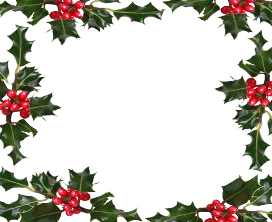 holly border png