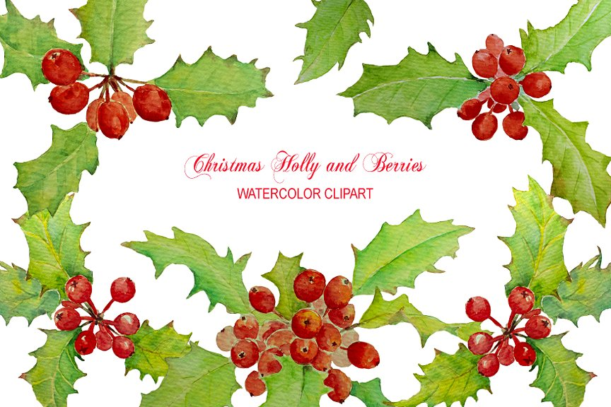 Watercolor christmas holly illustrations. Bush clipart berry