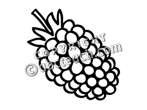 Clip art basic words. Berries clipart boysenberry