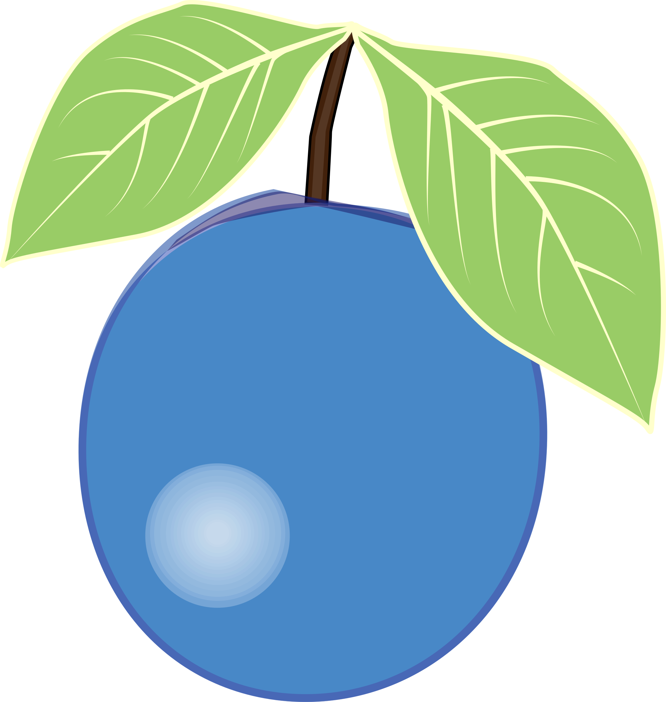 Blueberry clipart blueberry bush. Big image png