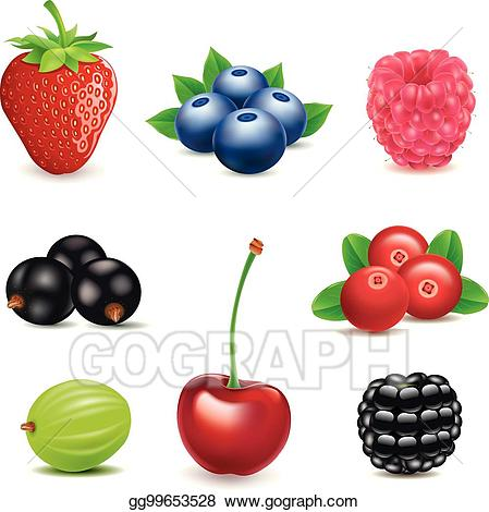 Vector stock strawberry blueberry. Strawberries clipart cherry