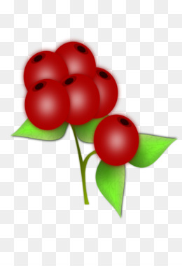 Berry clipart goji berries. Strawberry fruit mulberry png