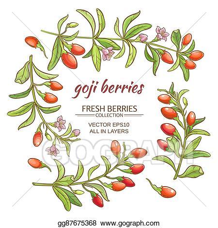 Vector art drawing gg. Berry clipart goji berries