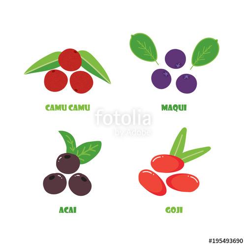 Berry clipart goji berries. Set collection of vector