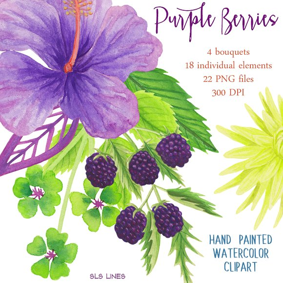 Berry clipart purple berry. Berries flowers illustrations creative
