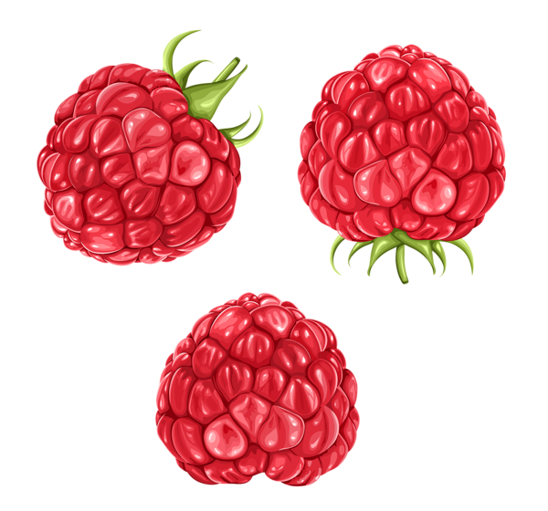 Raspberries PNG Clipart Picture