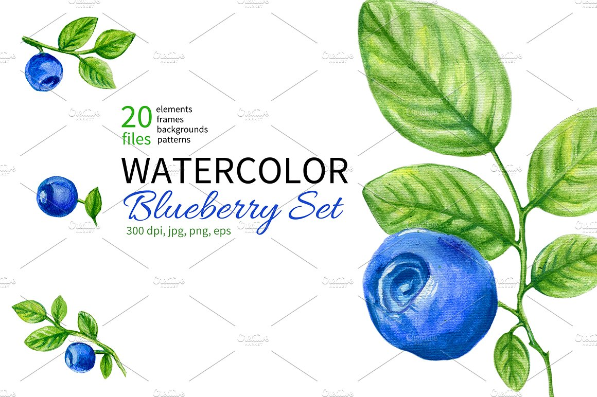 Watercolor blueberry collection patterns. Berry clipart red object