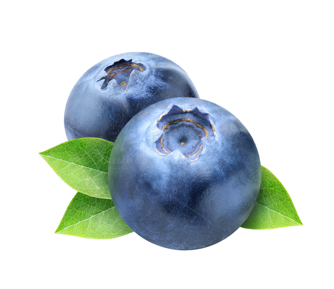 Blueberry png images free. Blueberries clipart transparent background