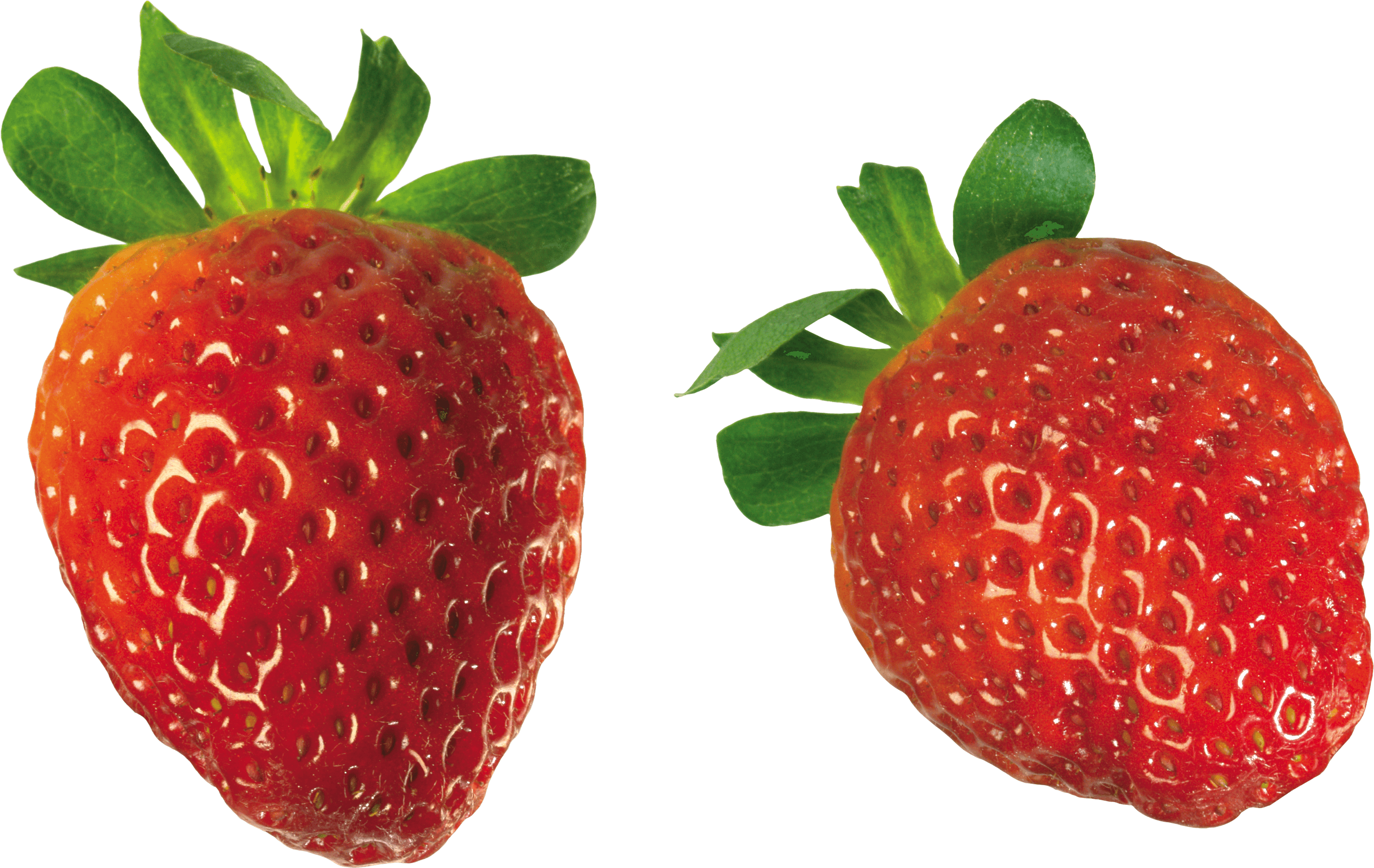 Strawberry solo transparent png. Strawberries clipart three