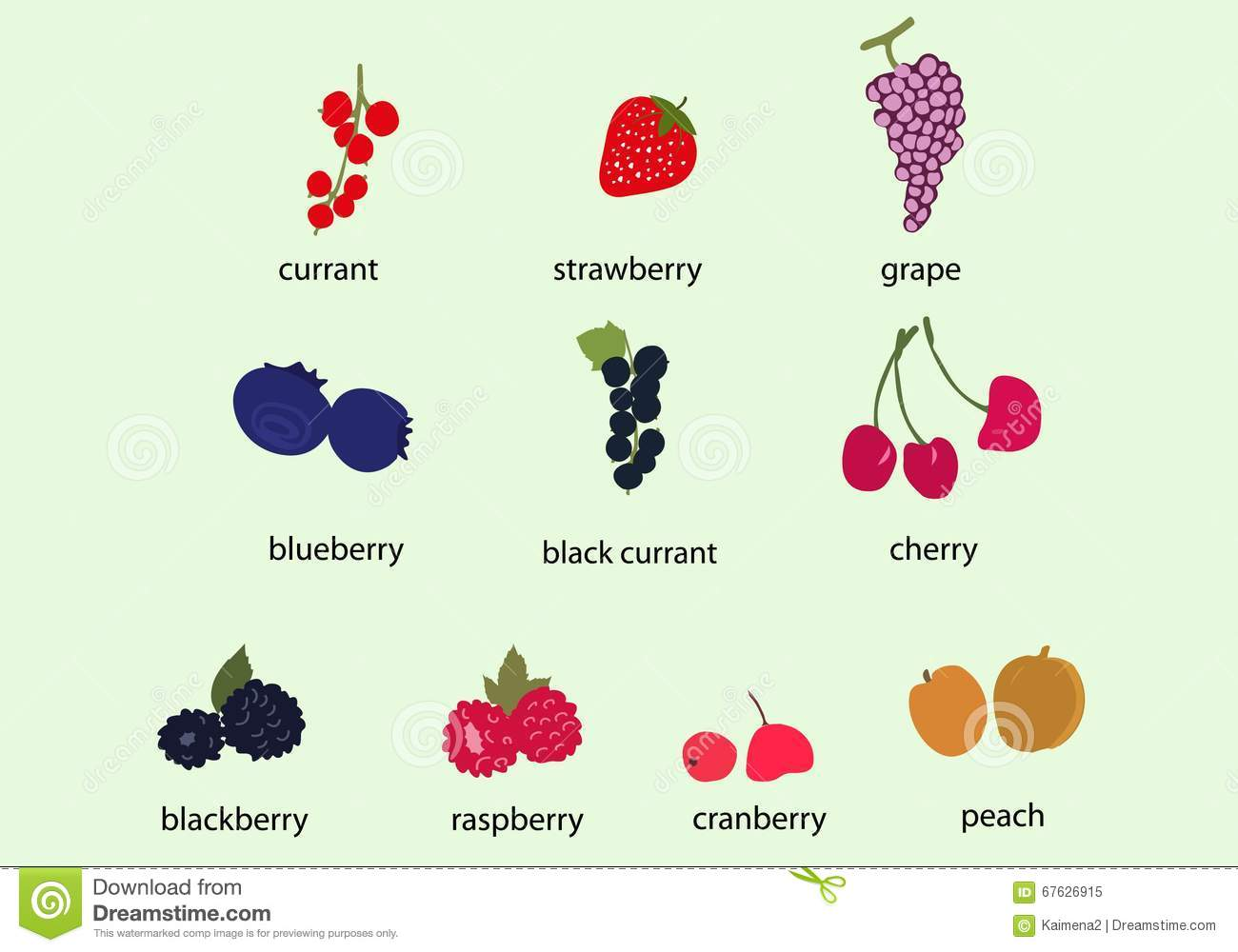 Berry clipart vector. Currant pencil and in