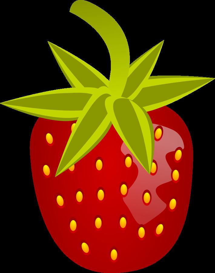 Clipart winter berry. France vector clip art
