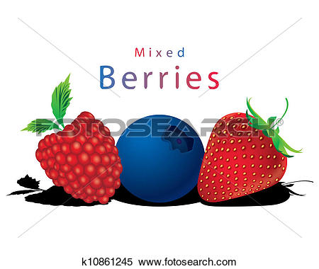 Berry clipart vector. Mixed