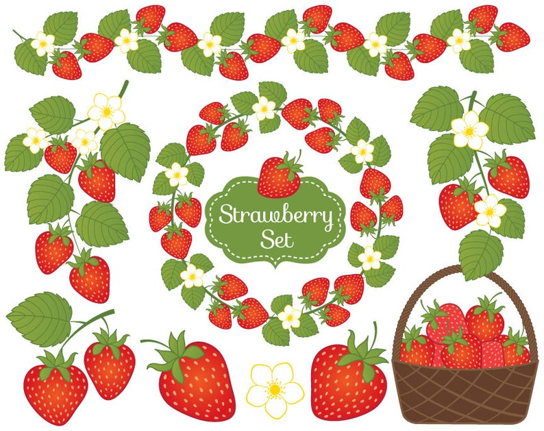 Strawberry strawberries clip art. Berry clipart vector