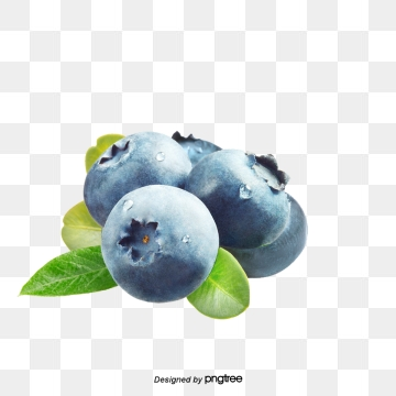 Blueberry clipart vector. Png psd and with