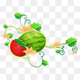 Berry clipart watermelon vine. Small png vectors psd