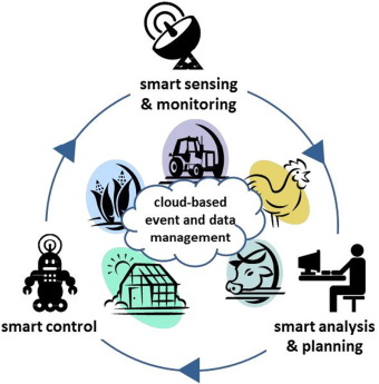 Big data in smart. Bibliography clipart primary sector
