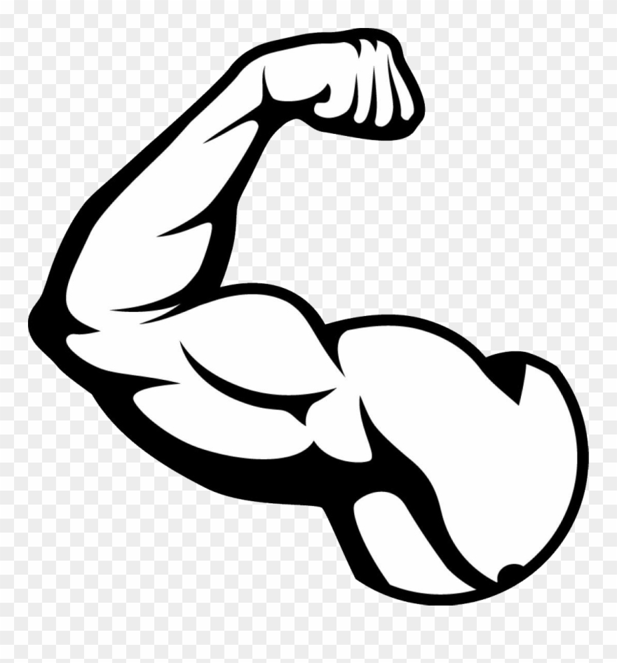 Clip art free muscle. Bicep clipart