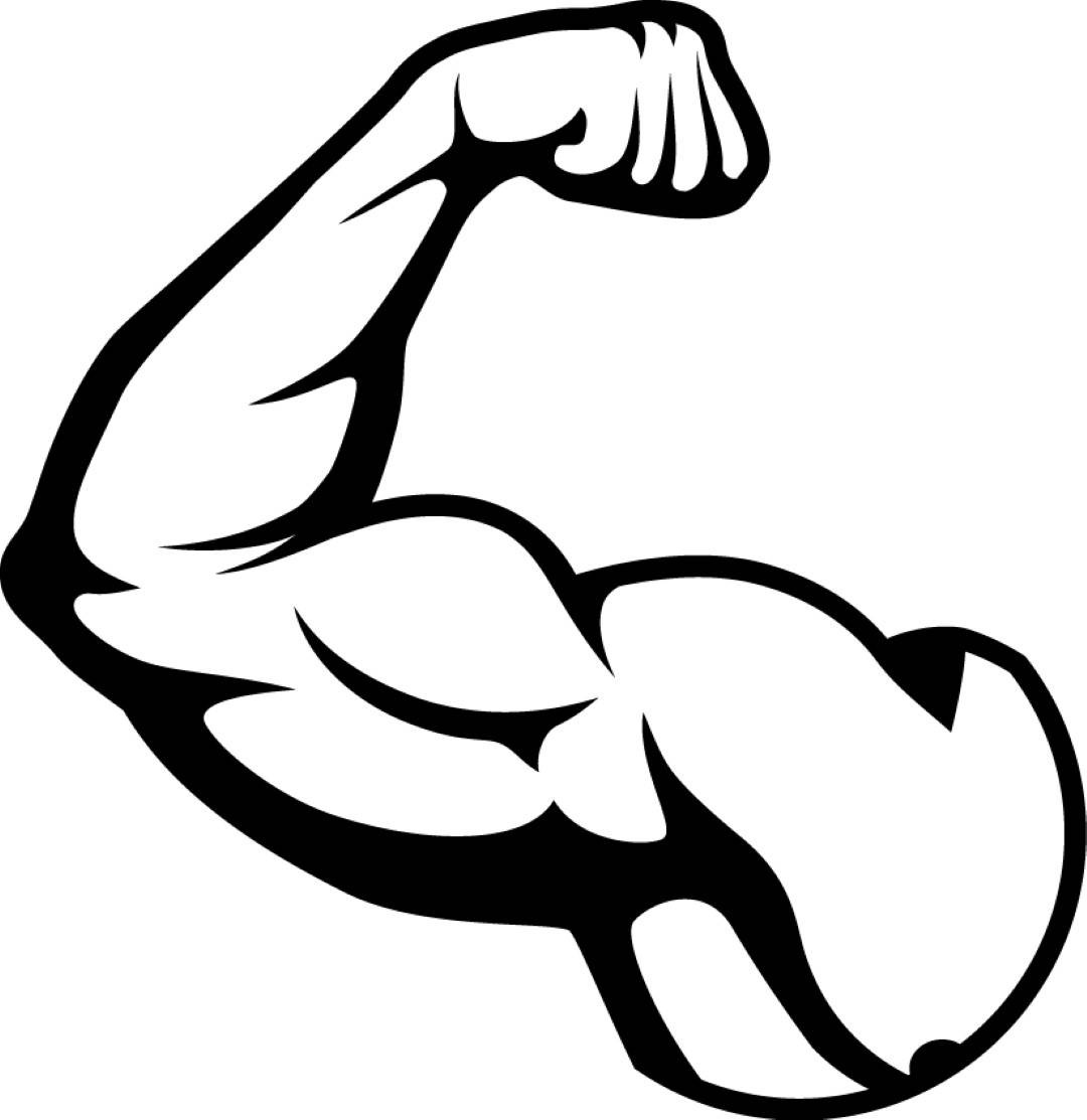 Bicep clipart. Muscles fit weightlifting bodybuilding