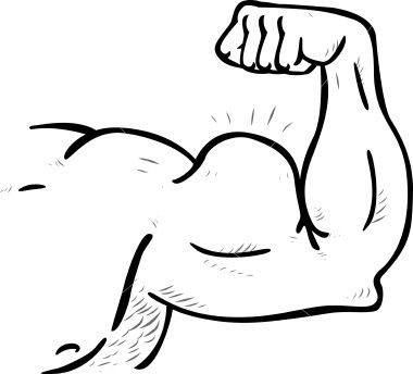 Bicep clipart big arm. Muscle the sexy cynic