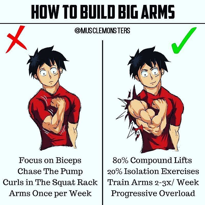 How to build arms. Bicep clipart big arm