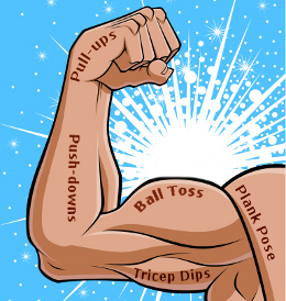 Top arm workouts for. Arms clipart forearm