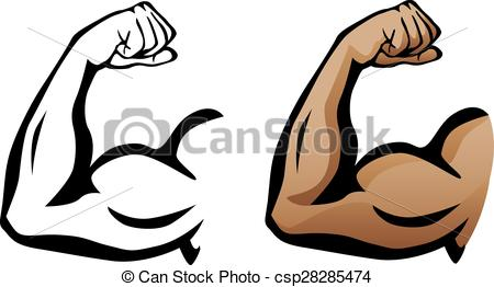 Gym clipart muscle arm. Bicep drawing free download