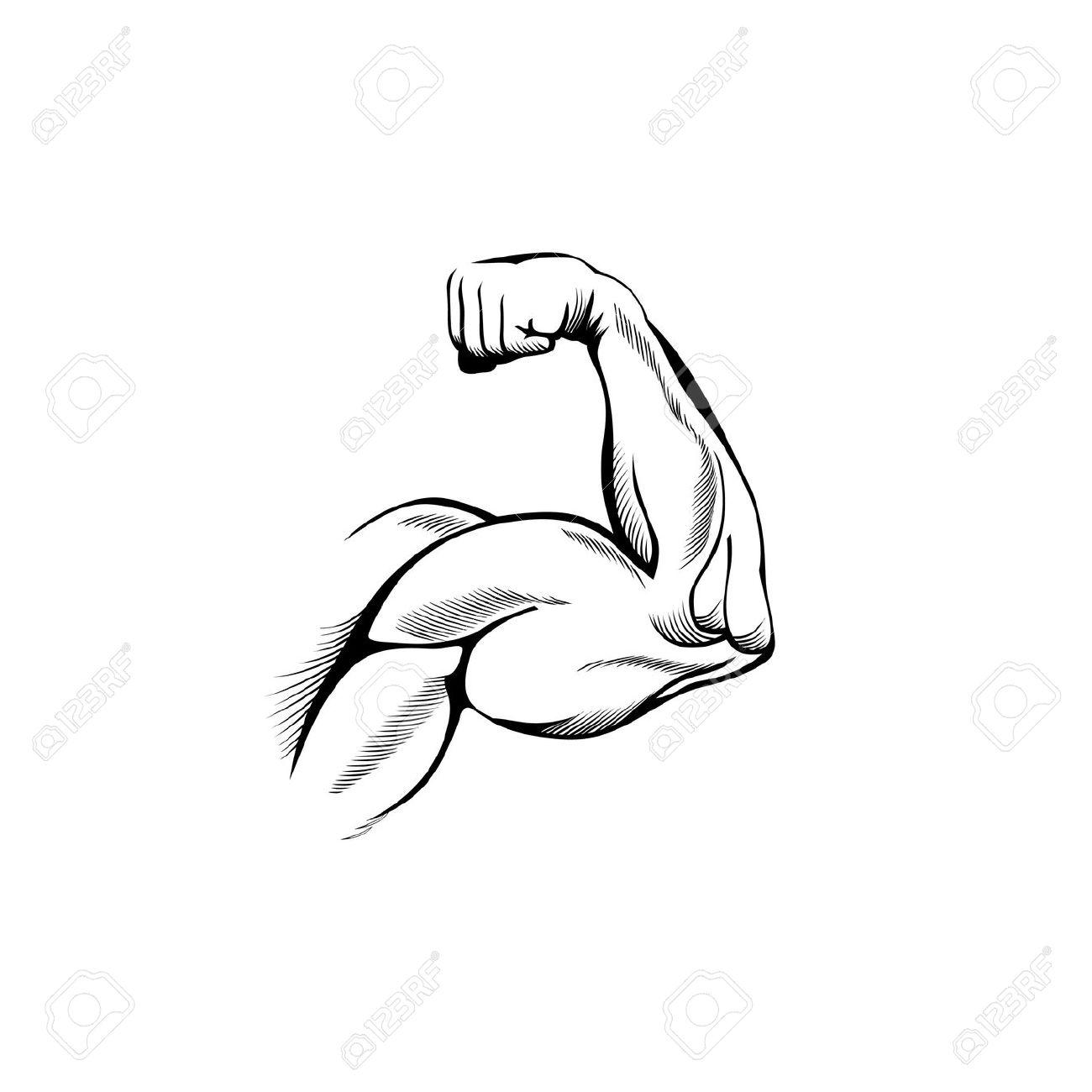 Biceps . Bicep clipart flexing