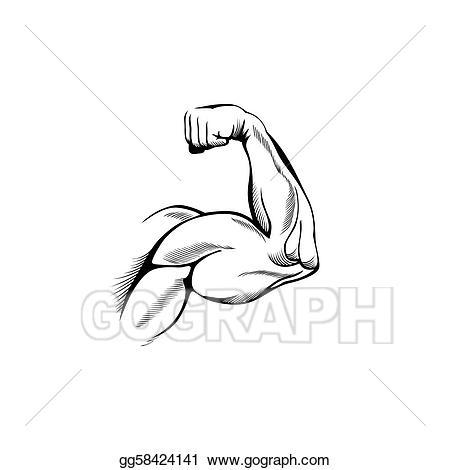 Biceps clip art royalty. Arms clipart flexed arm