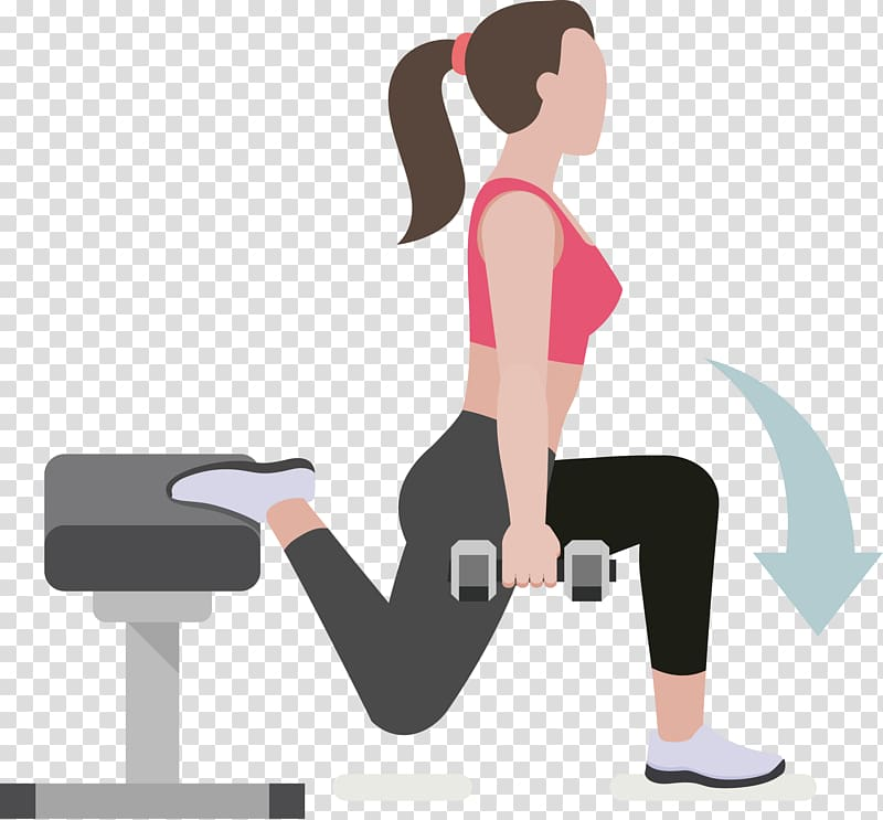 Dumbbell clipart fitness training. Physical exercise weight