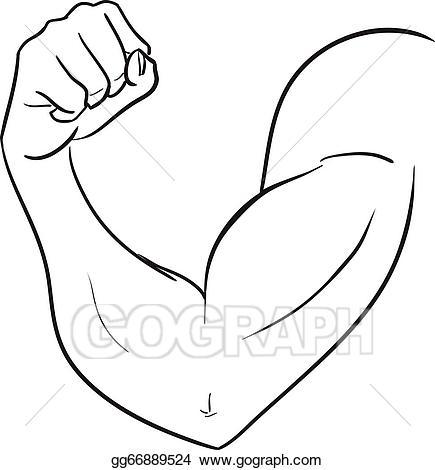 Bicep clipart strong man. Clip art vector biceps