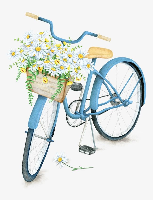 Exquisite beautiful baskets bicycle. Clipart bike flower