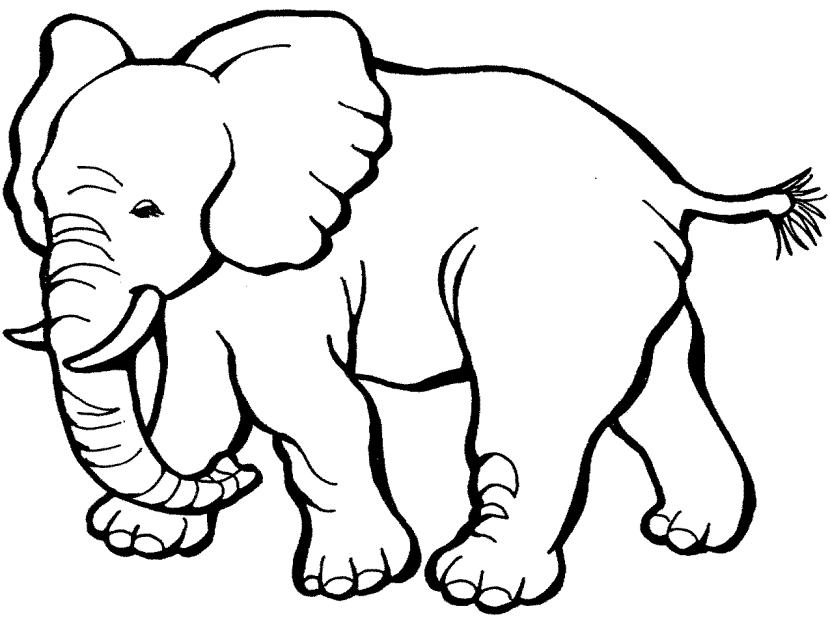 Image result for black. Big clipart african elephant