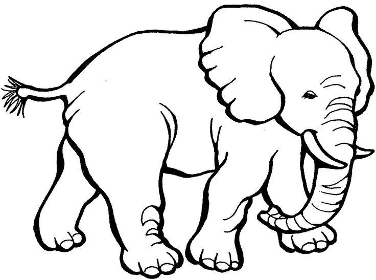 best elephants images. Big clipart big elephant