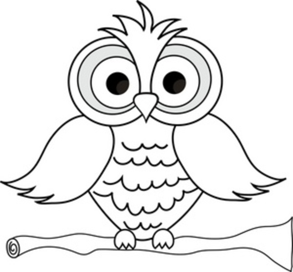 Clipart owl sketch. Wise with big eyes