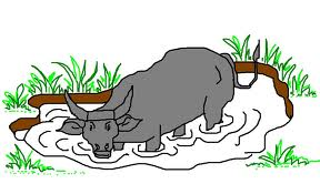 The frogs new king. Big clipart carabao