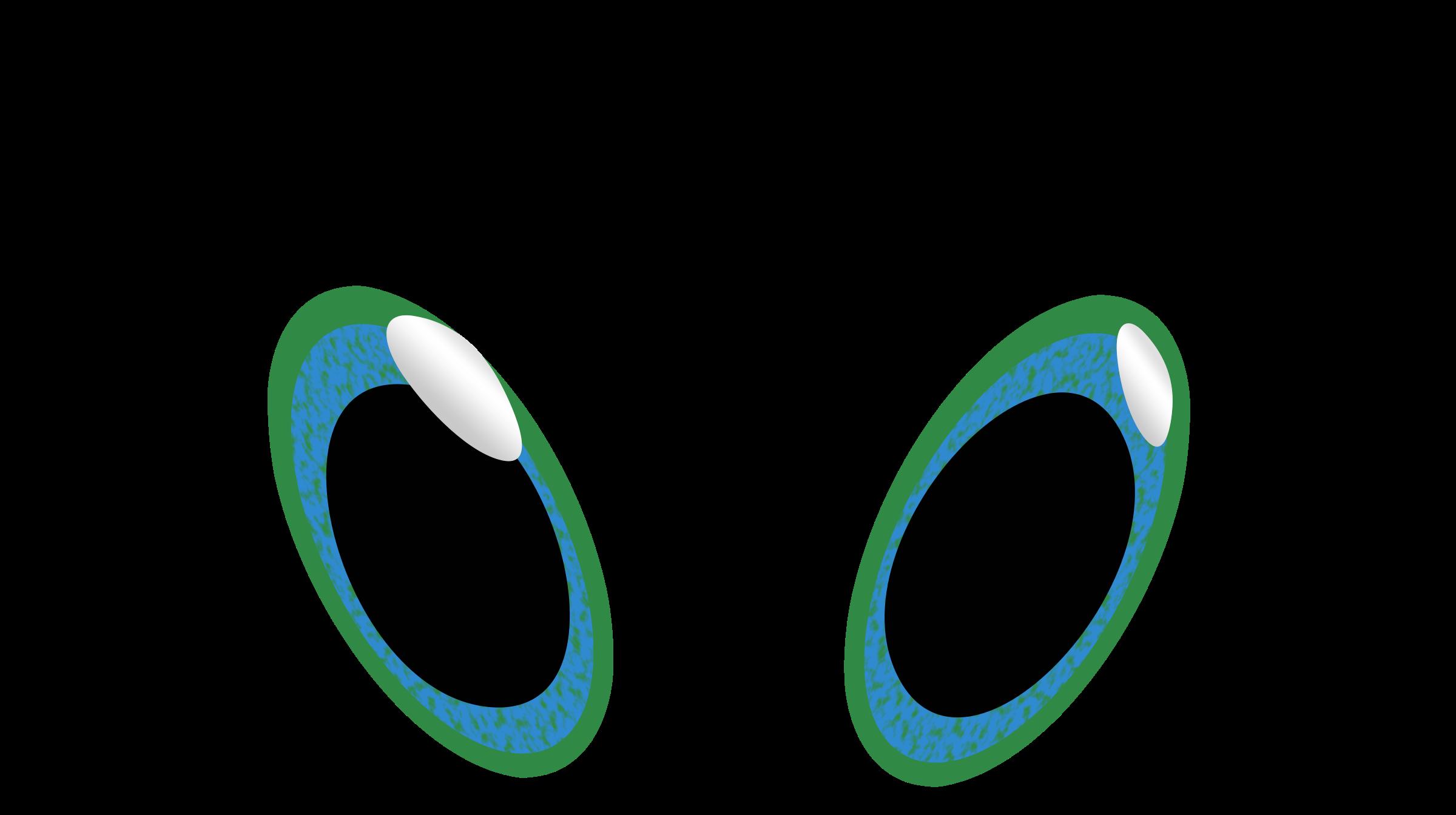 Big cartoon eyes panda. Eyeballs clipart octopus eye