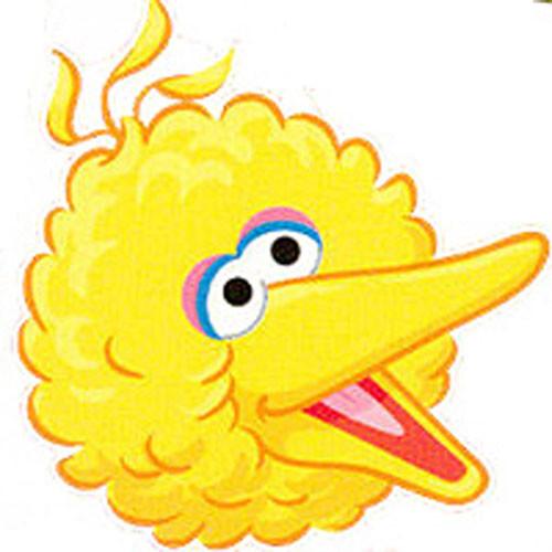 Head clipart big bird. Free cliparts download clip