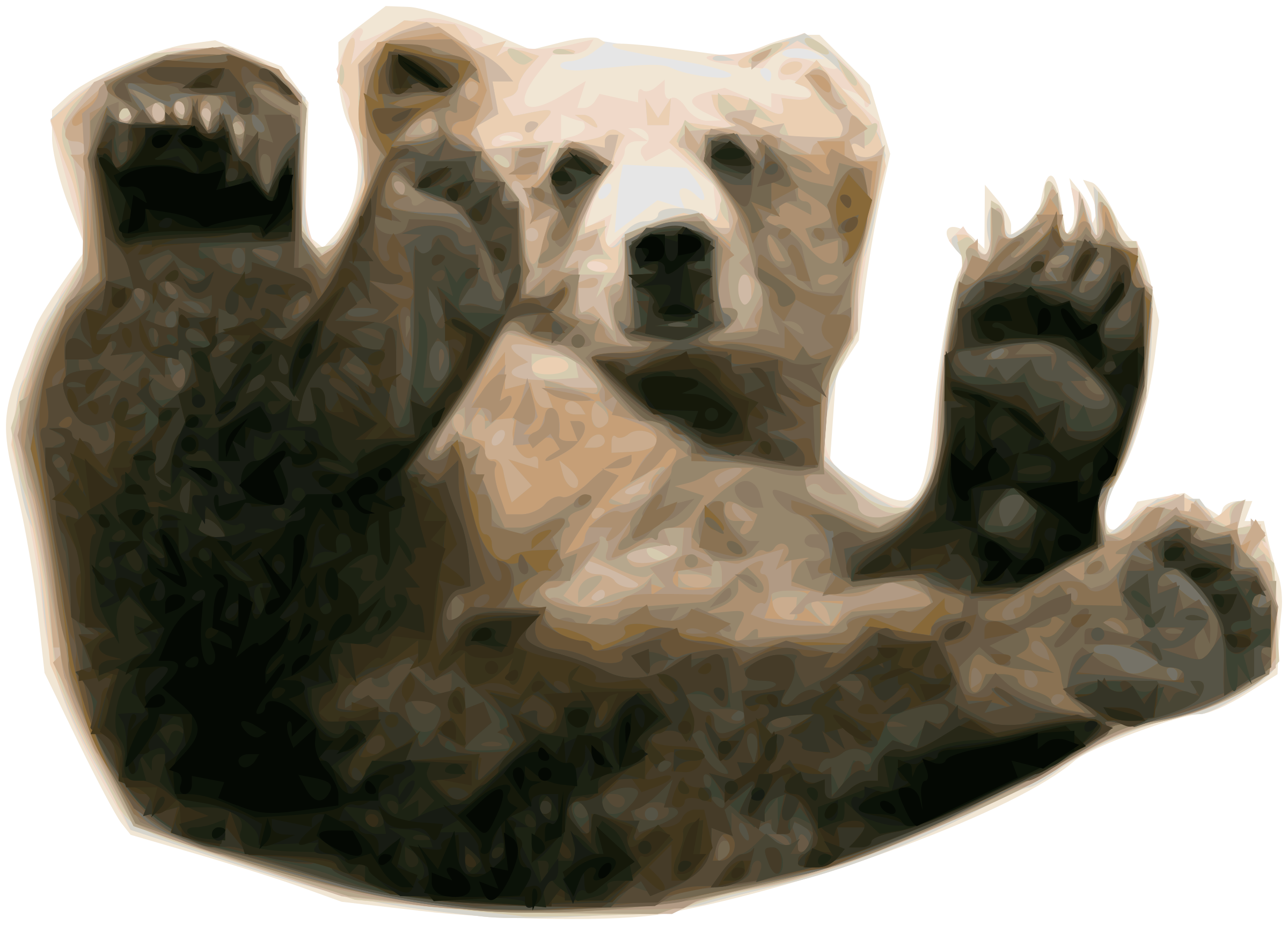 Big clipart grizzly bear. Image png