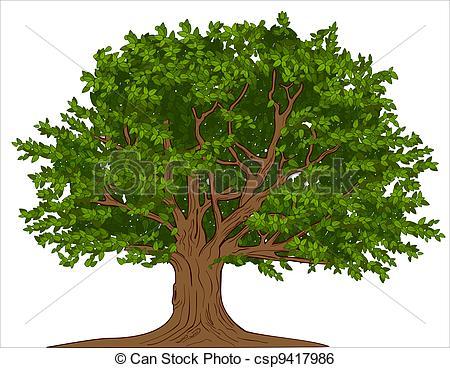 Tree . Big clipart huge
