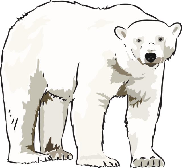 Family clipart polar bear. Art kid clipartix