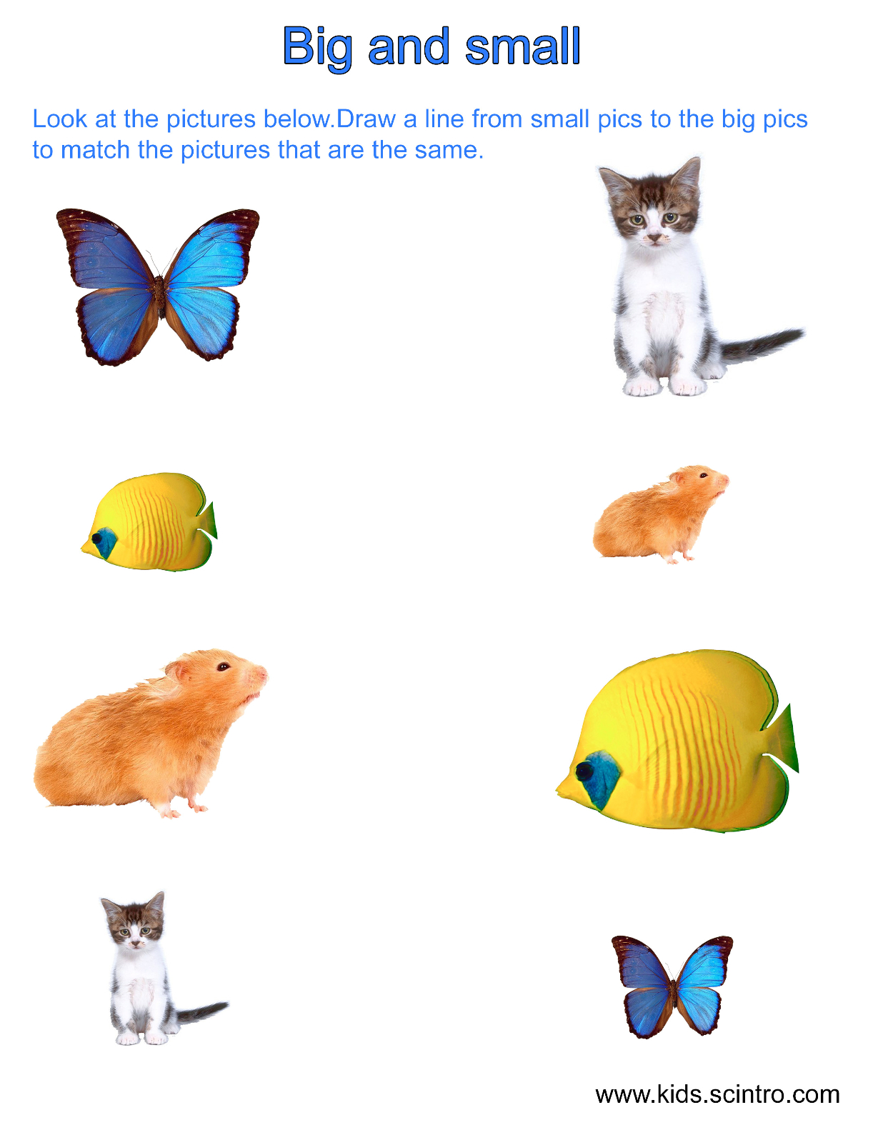 Big clipart small animal. Learning about sizes amp