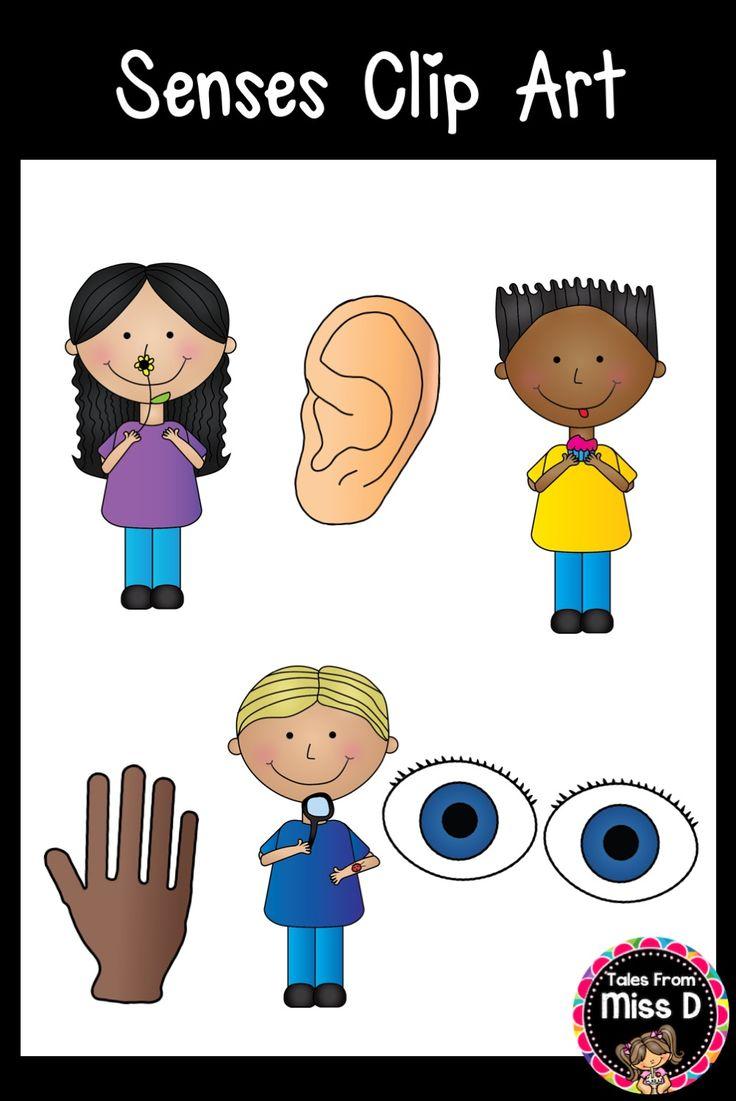 Binocular clipart nonfiction text.  best senses images