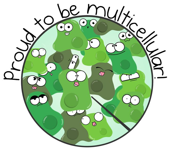 best science pictures. Cell clipart organism