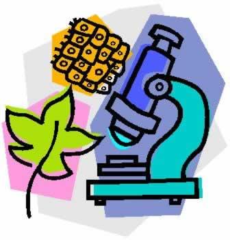 Biological sciences majors clip. Biology clipart biology major
